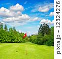golf field. green grass and blue sky 12324276