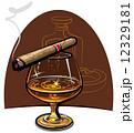 お酒 酒 アルコールのイラスト 12329181