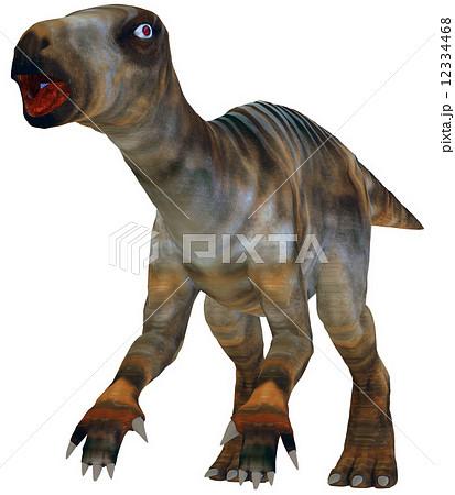 イグアノドン☆Iguanodonのイラスト素材 [12334468] - PIXTA