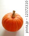 オレンジ色のかぼちゃ 12372310