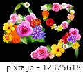 花のファッション小物 黒背景 12375618