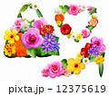 花のファッション小物 白背景 12375619