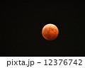 皆既月食 12376742