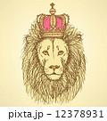 ライオン ビンテージ スケッチのイラスト 12378931