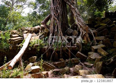 カンボジア ベンメリア遺跡 12381807