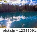 青い池 12386091