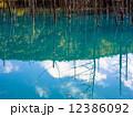 青い池 12386092