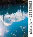 青い池 12386093