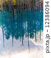 青い池 12386094
