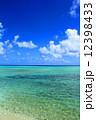 沖縄の海 12398433