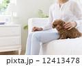 ソファに座る女性とトイプードル 12413478