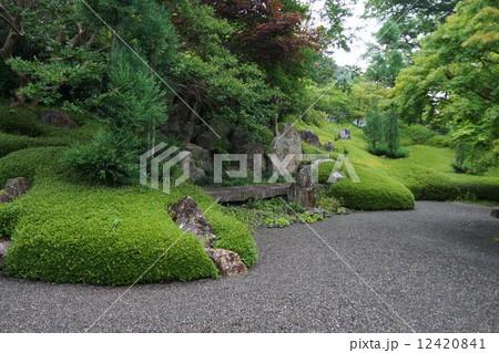 萬松山興禅寺界隈(昇龍の庭) 12420841