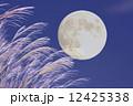 月とススキ 12425338