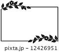 フレーム イラスト 花のイラスト 12426951