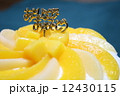 黄色と白の手作り桃ケーキ 12430115
