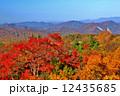 自然 紅葉 風景の写真 12435685