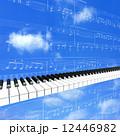 ピアノの鍵盤が演奏している 12446982