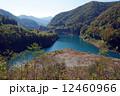 秋の奥四万湖 12460966