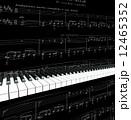 ピアノの鍵盤が演奏している 12465352