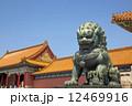 動物 アジア アートの写真 12469916