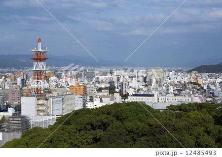 和歌山城からの和歌山市街地 12485493