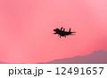 軍用機 F-15 飛行機の写真 12491657
