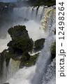 イグアスの滝 12498264