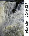 イグアスの滝 12498274