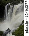 イグアスの滝 12498277