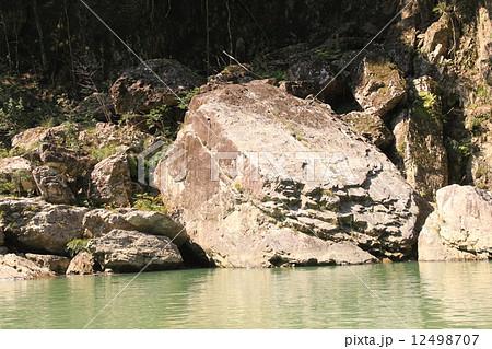 瀞峡のカメの形をした岩 12498707