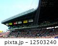満員 甲子園球場 観客席の写真 12503240