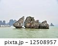 ベトナム ハロン湾 12508957