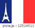 フランス国旗とエッフェル塔 12514511