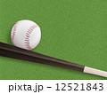 硬式ボールとバット 12521843