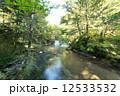 小滝 湯川 渓流の写真 12533532
