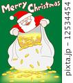豪華なクリスマスプレゼント 12534454