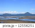 姫島 12556251