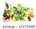 野菜と果物 12570466