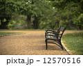 こしかけ ベンチ 縁台の写真 12570516