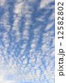 秋 雲 青空の写真 12582802