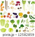 身近な野菜 12582859