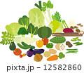たくさんの野菜 12582860