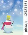 寒中 ペンギン雪だるま 12583461