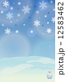 雪の結晶 雪 冬のイラスト 12583462