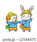 園児モルモットとウサギ 12584675