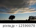 シルエット 夕暮れ 雲の写真 12590070