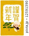 年賀状素材 年賀はがき 年賀素材のイラスト 12591390