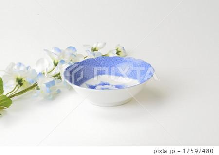 和皿の写真素材 [12592480] - PIXTA