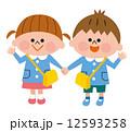 幼稚園 園児 12593258