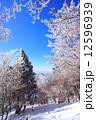 樹氷 冬山 霧氷の写真 12596939
